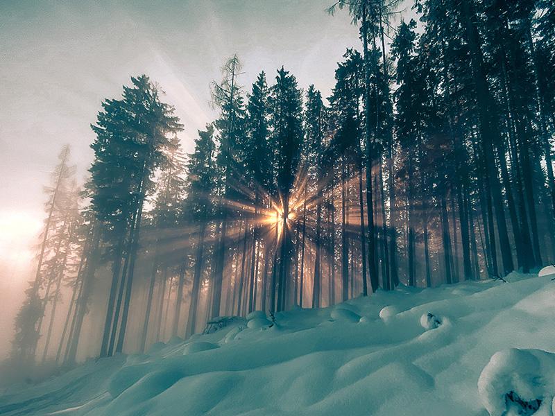 Winterlandschaft im Sonnenuntergang